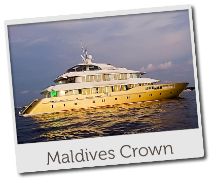 maldives crown home